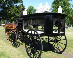 hearse being pulled by horses in michiana