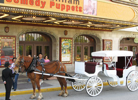 Horse drawn carriage in South Bend